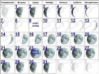 Лунный календарь стрижек на оракул
